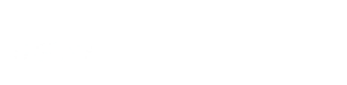 International Investigative Group